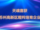 """苏州天魂喜获""""2019年苏州高新区瞪羚培育企业""""称号"""